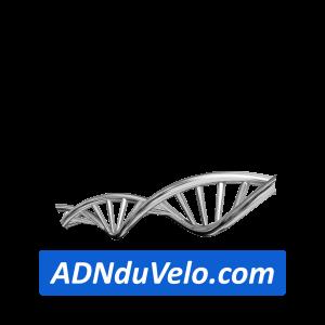 adnduvelo-siteweb